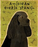 American Cocker Spaniel (black) Fine Art Print