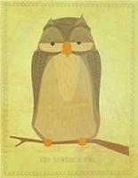 The Sensible Owl Framed Print