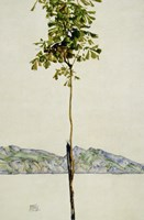 Horse Chestnut Tree, Lake Constance. 1912 Fine Art Print