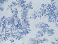 Toile Fabrics V Framed Print