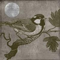 Moon Bird Framed Print