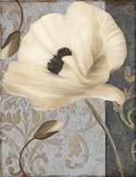 Poppy Brocade II Framed Print