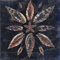 Maritime Blues VII Framed Print