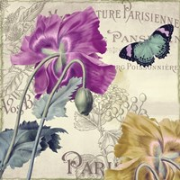 Petals of Paris III Framed Print