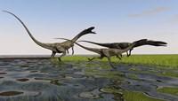Group of Coelophysis Dinosaurs Fine Art Print