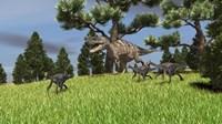 Ceratosaurus Chasing Gigantoraptors Framed Print