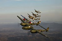Five Lockheed P-38 Lightnings Fine Art Print