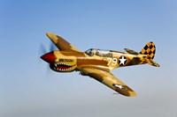 P-40N Warhawk Fine Art Print