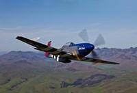 A P-51D Mustang 2 Fine Art Print
