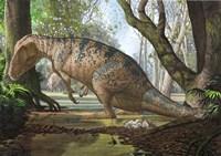 An Edmarka Rex Fine Art Print