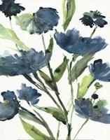 Blueberry Blooms  II Framed Print