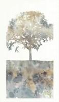 Water Tree I Fine Art Print