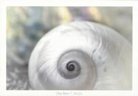 Pearl Lite Fine Art Print