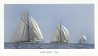 Three Sails Fine Art Print