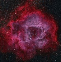 The Rosette Nebula Fine Art Print