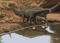 Apatosaurus Dinosaurs Fine Art Print