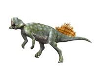 Psittacosaurus Lujiatunensi Fine Art Print