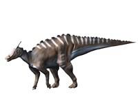 Saurolophus Dinosaur Fine Art Print