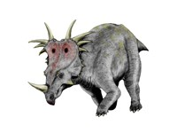 Styracosaurus Dinosaur Fine Art Print