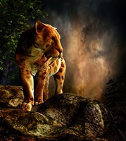 Sabre-toothed Cat Fine Art Print