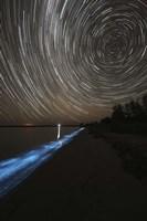 Star Trails over Bioluminescence Fine Art Print