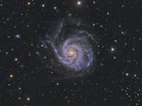 Messier 101, Pinwheel Galaxy Fine Art Print