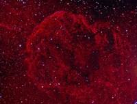 The Jellyfish Nebula Fine Art Print