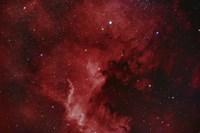 NGC 7000, The North America Nebula Fine Art Print