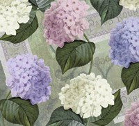Hortensia Soft Green Framed Print