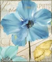 Blue Mountain Poppy Framed Print
