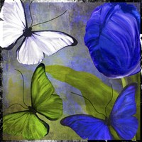 Morphos Two Framed Print