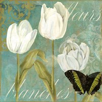 White Tulips I Framed Print