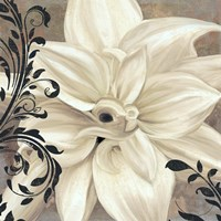 Winter White II Framed Print