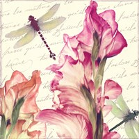 Dragonfly Morning I Framed Print