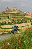 Blue tractor on rural road, San Vicente de la Sonsierra Village, La Rioja, Spain Fine Art Print