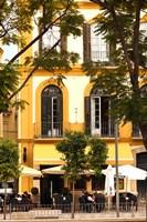 Outdoor Cafes, Plaza de la Merced, Malaga, Spain Fine Art Print