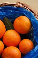 Basket of Oranges, Greece Fine Art Print