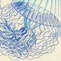 Vintage Jellyfish I Fine Art Print