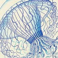 Vintage Jellyfish II Fine Art Print