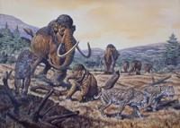 A Herd of Woolly Mammoth and Scimitar Sabertooth, Pleistocene Epoch Fine Art Print