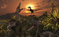 A Group of Feathered Carnivorous Velociraptors Fine Art Print