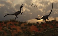 A Pair of Velociraptors Fine Art Print
