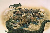 A Herd of Triceratops Defend their Territory Fine Art Print