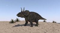 Triceratops Walking across a Barren Landscape 2 Fine Art Print