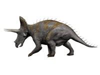Triceratops Dinosaur 1 Fine Art Print