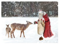 Santa Greets The Deer Framed Print