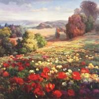 Fields Of Italia I Fine Art Print