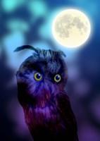 Nightshift Fine Art Print