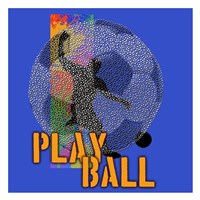 Play Ball Soccer Framed Print