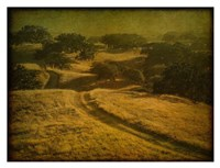 Ranch Road and Oak Savannah Fine Art Print